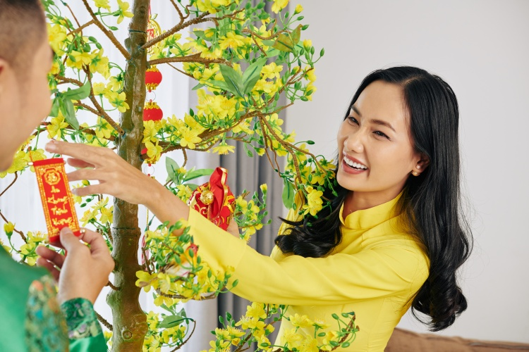 Laughing young Asian couple decorating apricot tree for Lunar New Year